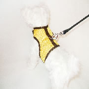 Yellow Athletic Harness