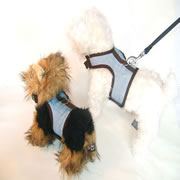 Jeans Dog Harness