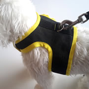 MiniDach Denim Harness