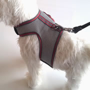 Dachshund Silver Athletic Easy Walk Harness