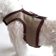 MiniDach Chocolate Easy Walk Harness for Dogs